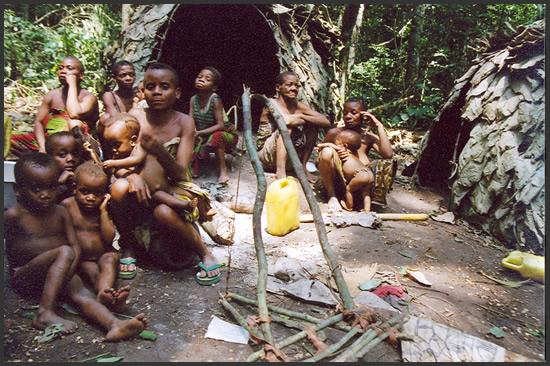 племена пигмеев