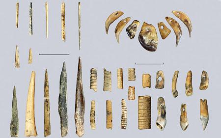 древние предки людей