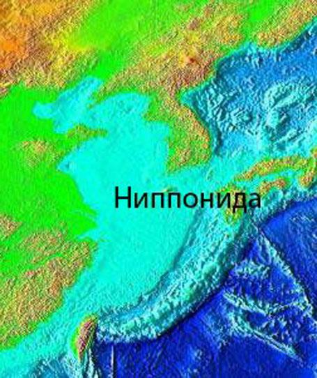 Затонувшие земли Ниппониды