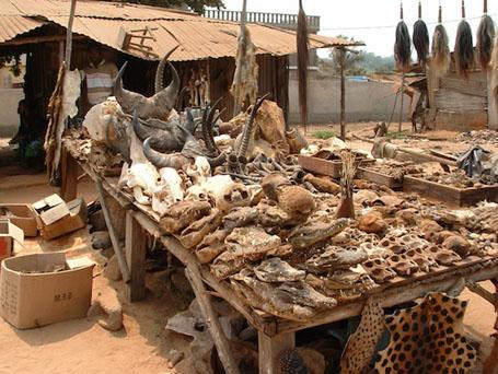 Lome? Voodoo Market