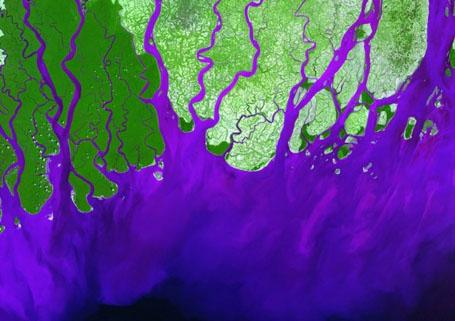 Спутниковая фотография - дельта реки Ганг