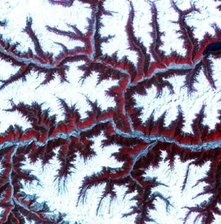 Спутниковая фотография Гималаев
